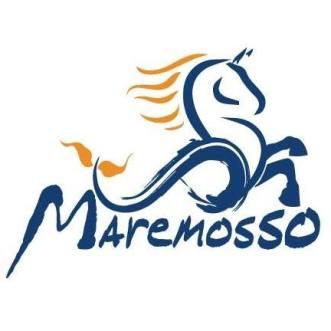 LogoOfficinaMareMosso